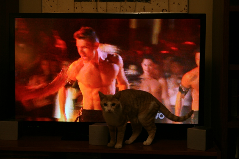 Ginger vs. Dancing with the Stars 2